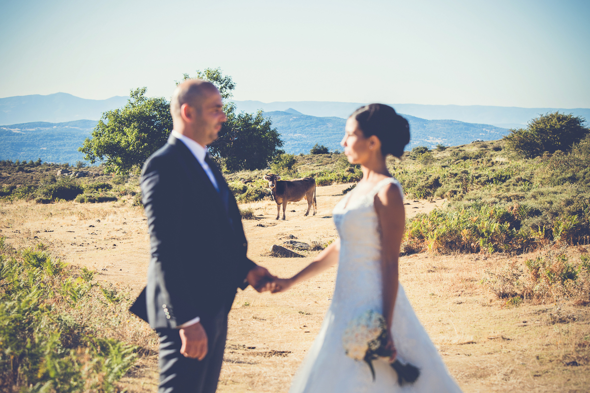 fotografo matrimonio fonni